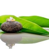 Les anneaux de mariage ont placé sur une pierre avec les feuilles vertes et la réflexion Images stock