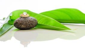 Les anneaux de mariage ont placé sur une pierre avec les feuilles vertes et la réflexion Image libre de droits