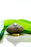 Les anneaux de mariage ont placé sur une pierre avec les feuilles vertes et la réflexion Photographie stock libre de droits