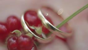 Les anneaux de mariage sont très plan rapproché banque de vidéos