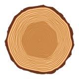 Les anneaux de tronc d'arbre conçoivent d'isolement sur le fond blanc illustration de vecteur
