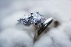 Les anneaux sur la fleur du coton images stock