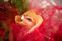 Les anneaux sur les fleurs, dans une boîte, sur un tissu blanc sur des jouets, couleurs, épousant des détails, anneaux de mariage Photographie stock libre de droits