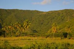 Les Antilles, les Caraïbe, Antigua, côte sud, à intérieur près de la plage de Turner Image libre de droits