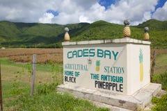 Les Antilles, les Caraïbe, Antigua, St Mary, baie de Cades, signe d'ananas de noir de l'Antigua Photographie stock libre de droits