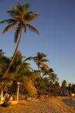 Les Antilles, les Caraïbe, Antigua, St peuvent, Morris Bay, plage au coucher du soleil Photographie stock libre de droits