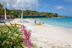 Les Antilles, les Caraïbe, l'Antigua, la longue baie, la plage et les chats de Hobie Photo stock