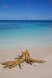 Les Antilles, les Caraïbe, l'Antigua, la longue baie, la vue de la longue baie et la plage Photos libres de droits