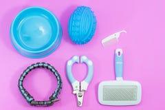 Les approvisionnements d'animal familier ont des colliers, brosse, ciseaux de clou Bols de nourriture Photographie stock