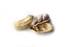 Les arachides bouillies montrent les graines à l'intérieur Photo libre de droits