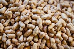 Les arachides du ` s de l'Asie dans la coquille donnent au fond une consistance rugueuse Images stock