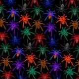 Les araignées modèlent les tarentules colorées sur le fond arrière illustration stock