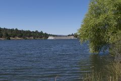 Les arbres au lac Roberts au Nouveau Mexique Image stock