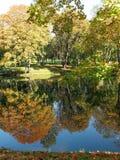 Les arbres colorés d'automne s'approchent du lac Images libres de droits