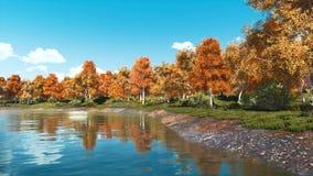 Les arbres colorés d'automne sur un lac de forêt étayent banque de vidéos