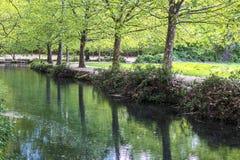 Les arbres d'amande ont réfléchi sur la rivière images libres de droits
