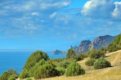Les arbres de cyprès sur le flanc de coteau sur la plage sous les cieux bleus Photographie stock