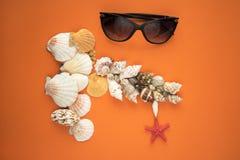 Les arbres de Noël de branche des coquilles et des lunettes de soleil de mer Photographie stock