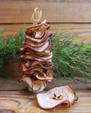 Les arbres de Noël sont faits main de la poire sèche de fruits Photos libres de droits