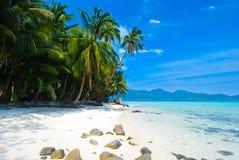 Les arbres de noix de coco sur le sable blanc échouent, comme l'île de paradis image stock