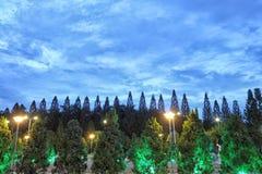 Les arbres en parc à midi avec le ciel impressionnant opacifient photographie stock