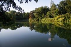Les arbres et l'usine au parc réfléchissent sur le lac Photo libre de droits