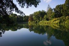 Les arbres et l'usine réfléchissent sur le lac Photos libres de droits
