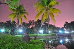 Les arbres par l'étang à la ville de régions boisées font du jardinage photographie stock libre de droits
