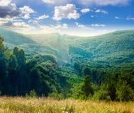 Les arbres s'approchent de la vallée en montagnes image stock