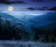 Les arbres s'approchent de la vallée en montagnes la nuit images libres de droits