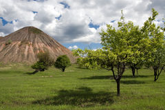 Les arbres s'approchent du vieux charbonnage Photo libre de droits