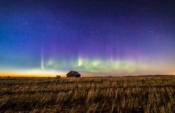 Les aurores et étoiles Images libres de droits