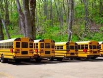 Les autobus scolaires typiques d'Américain rament dans une forêt extérieure Image libre de droits