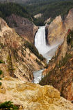 les automnes abaissent yellowstone Image stock