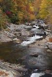 Les automnes colorés image libre de droits