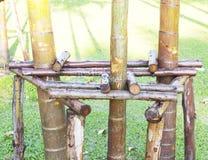 Les béquilles d'arbres, rend l'arbre fort Image libre de droits