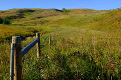 Les bétail clôturent courber loin Photos stock