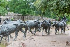 Les bétail sculptent à Dallas photo libre de droits