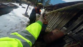 Les bûcherons commencent à couper le bois avec une corde POV banque de vidéos