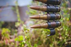 Les balles ceinturent avec des usines photo stock
