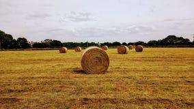 les balles rondes de terrains communaux hé Image stock