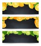 Les bannières horizontales de publicité ont placé avec le tableau noir et les agrumes Images libres de droits