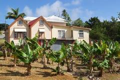 Les Barbade Photographie stock libre de droits