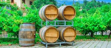 Les barils pour le vin et le raisin baguent l'élevage tout près Photo stock
