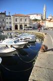 Les bateaux de Piran Image stock