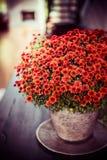 Les beaux chrysanthèmes fleurit le groupe sur la table de dîner au fond de salon Maison d'automne photographie stock libre de droits