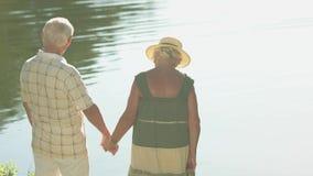 Les beaux couples des aînés s'approchent de l'eau banque de vidéos