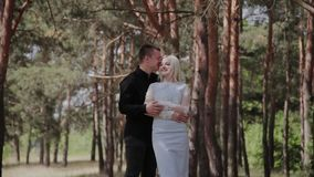 Les beaux et heureux couples affectueux embrassent tendrement dans la forêt clips vidéos