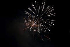 Les beaux feux d'artifice ont fleuri sous la forme de brillant pelucheux Photographie stock
