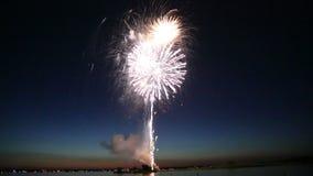Les beaux feux d'artifice ont illuminé le ciel nocturne banque de vidéos